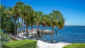 Cosas que hacer en Miami